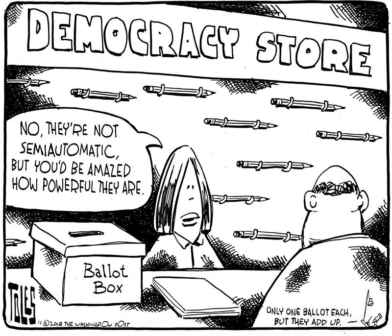 democracy store