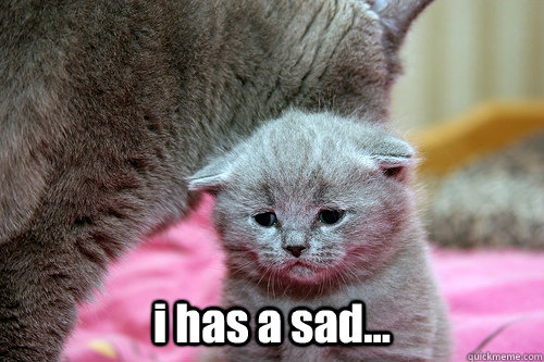 lolcat has a sad