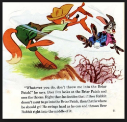 Brer Rabbit and the briar patch – Trumped Progressives