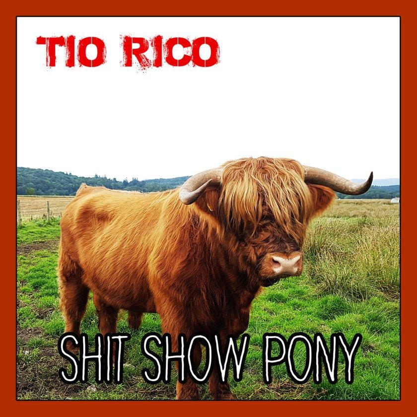 Shit Show Pony