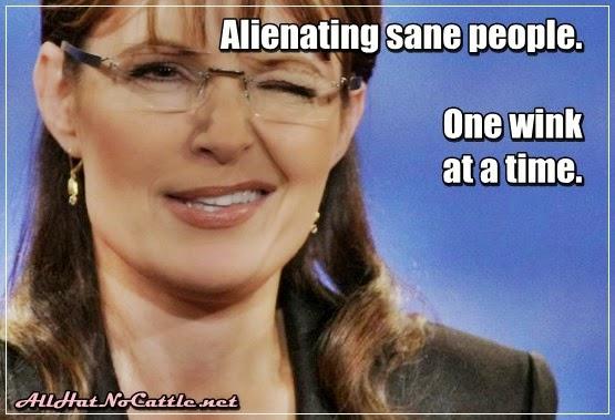 Palin Wink